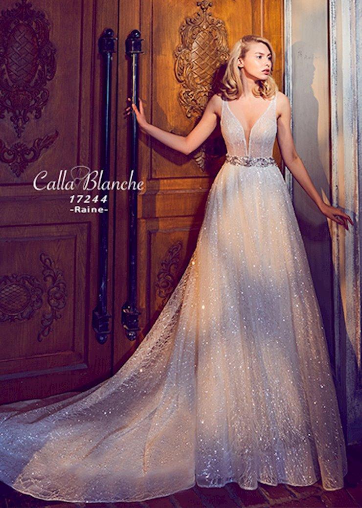 Calla Blanche #17244  Image