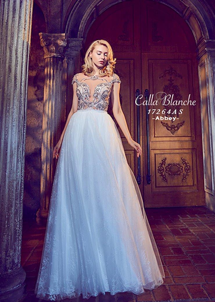 Calla Blanche 17264  Image