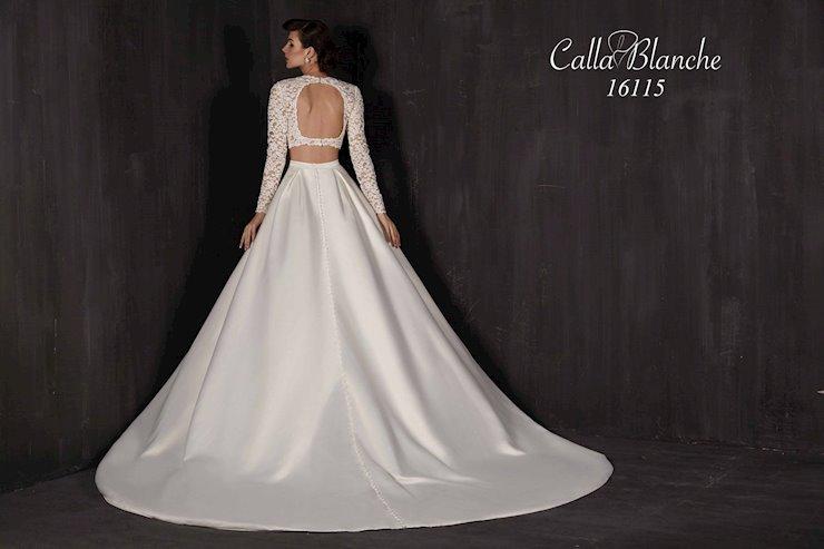 Calla Blanche 16115  Image