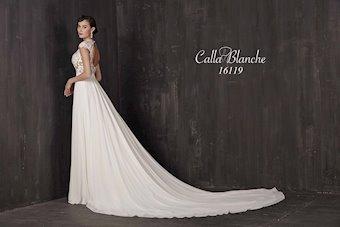 Calla Blanche 16119